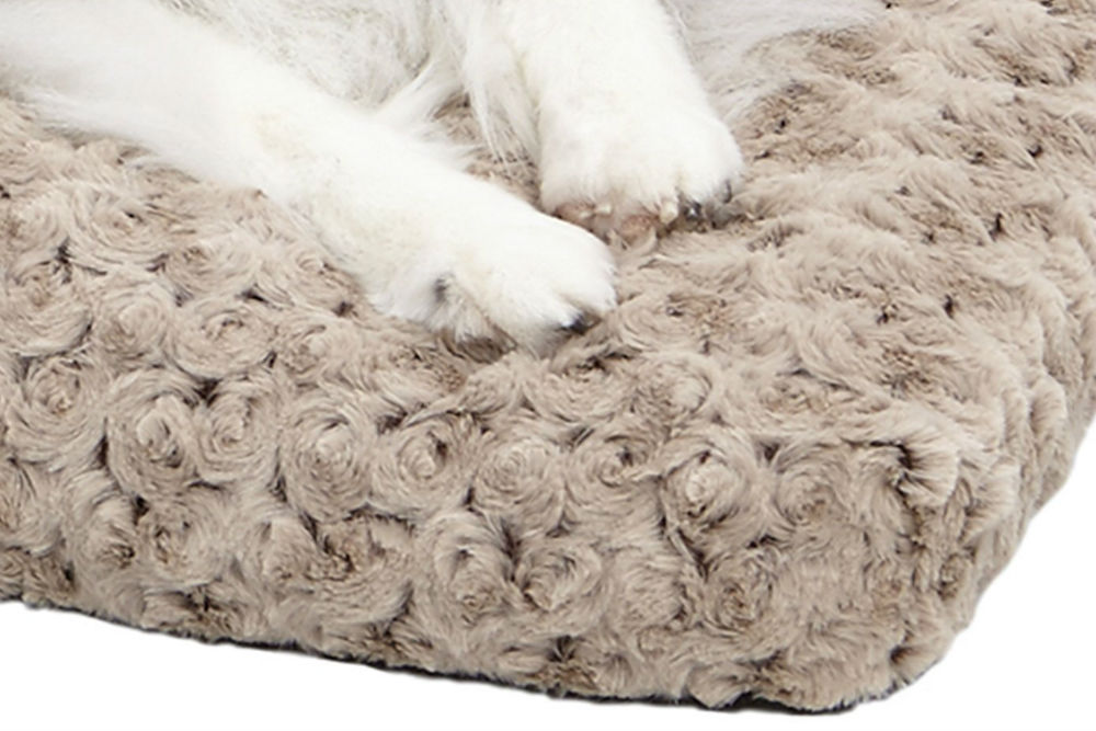 MidWest Homes for Pets Deluxe Pet Bed Review